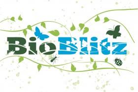BioBlitzflowerlogo-280x187